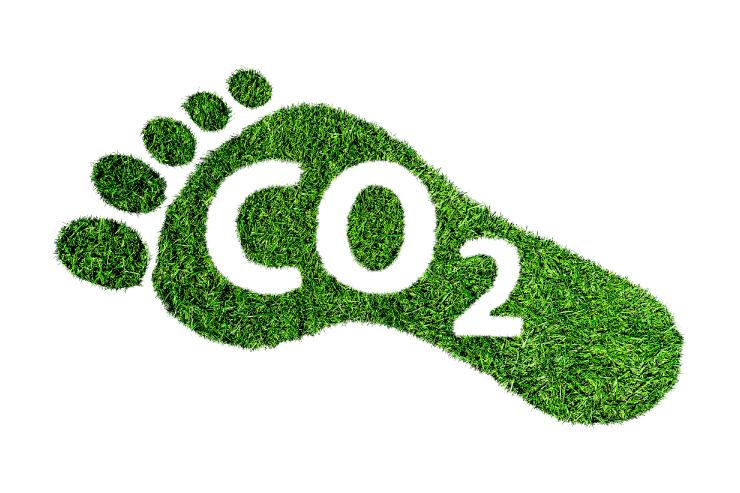 CO2 kompensiert klimabewusst Onlineshop cradle to grave