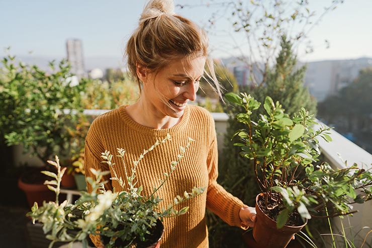 Ratgeber Urban Gardening