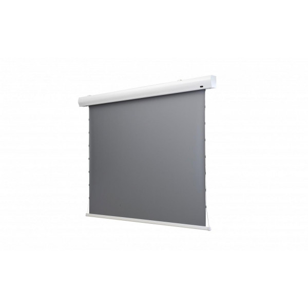 Celexon Tension-Leinwand HomeCinema Dynamic Slate ALR 298x168cm 16:9